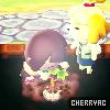 CherryAC