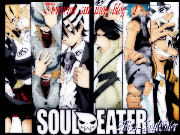 Bienvenues sur mon Blog entièrement dédié a Soul Eater