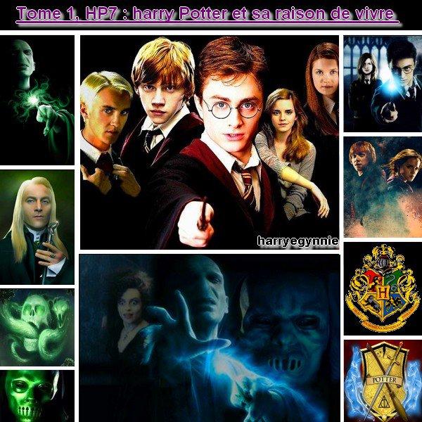 résumer de mon HP7 (1er fic de ma trilogie) :)