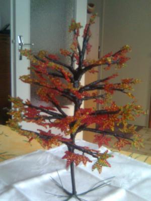 L'érable en automne