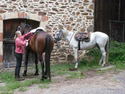 les vacances de mon cheval : 1er jour de rando