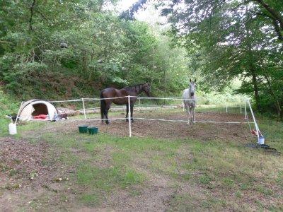 les vacances de mon cheval : le campement