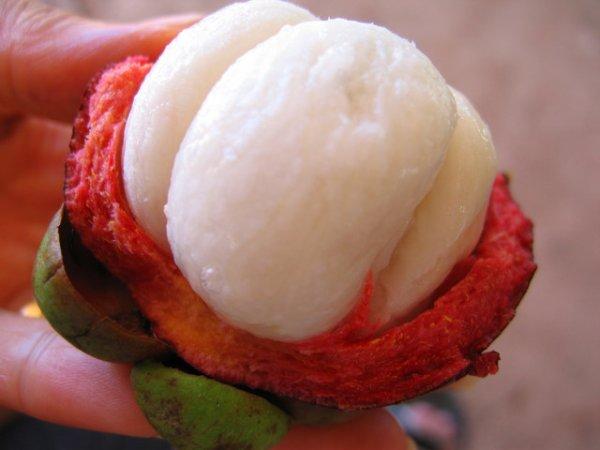 Le meilleur fruit ? le mangoustan !!!
