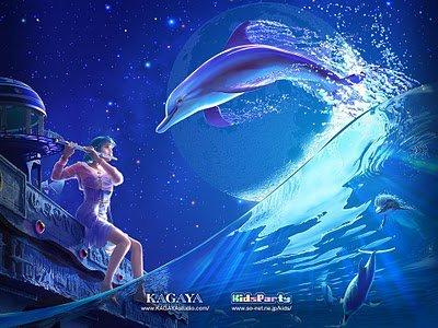 photo de dauphin