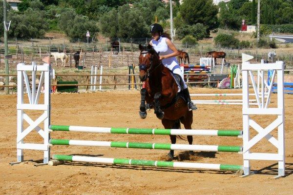 Concours ♥ avec Sultan 2010 ~ 2011 ♥ Photos !