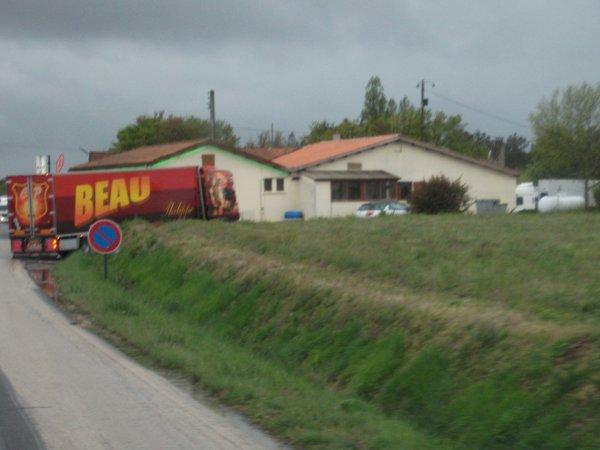 Scania beau