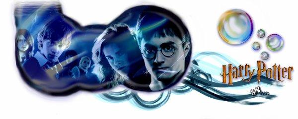 Catégorie Film : La saga Harry Potter .