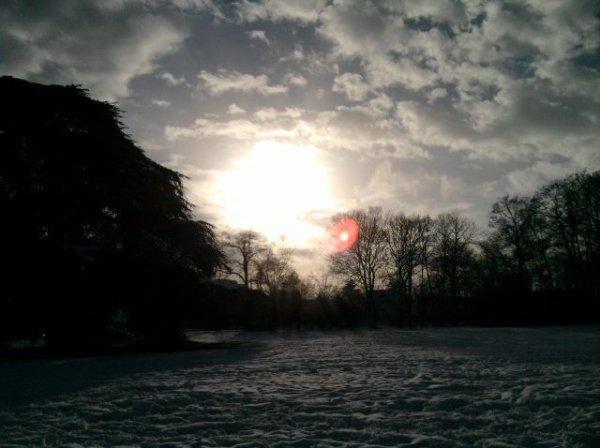 parc (hiver)