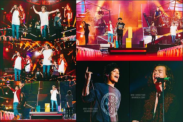 11/02/15 : Les One Direction donnaient un troisième concert du « On The Road Again Tour » à BrisbaneUne nouvelle ville pour un énième concert pour le groupe. Je trouve que le groupe se donne réellement à fond, ils sont vraiment heureux sur scène.