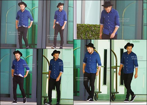 19/05/15 : Niall et Liam ont été photographiés alors qu'ils arrivaient à l'aéroport « Heathrow » de LondresAprès quelques jours en Amérique, Liam et Niall sont de retour sur le territoire anglais. Je suis totalement fan de la tenue de Liam, un superbe top !