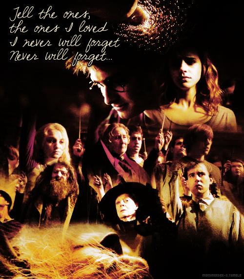 Vous osez utiliser mes propres sorts contre moi-même, Potter. Oui, je suis le prince de sang-mélé