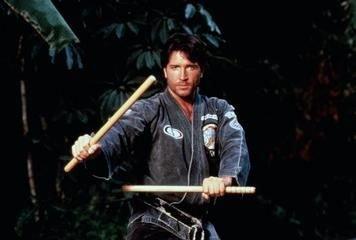L'arme parfaite (1990)