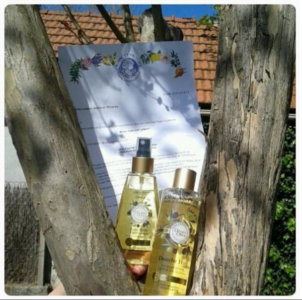 Avis sur l'huile Sèche et douche huile de la gamme Divine Olive de chez Jeanne en Provence