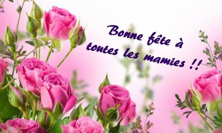 BONNE FETE A TOUTES LES MAMIES !!!