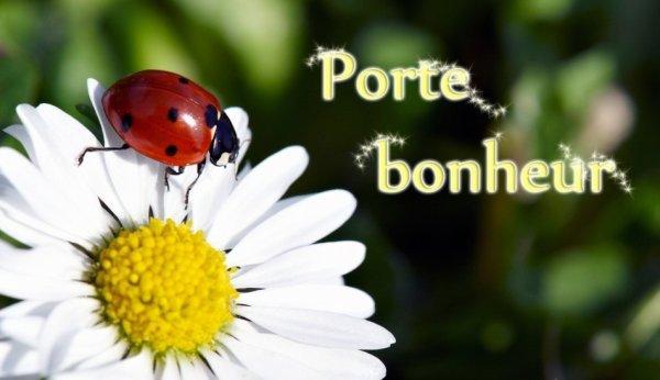 """Très beau cadeau porte bonheur de mon amie du blog """"des-poemes-en-or-2015"""""""