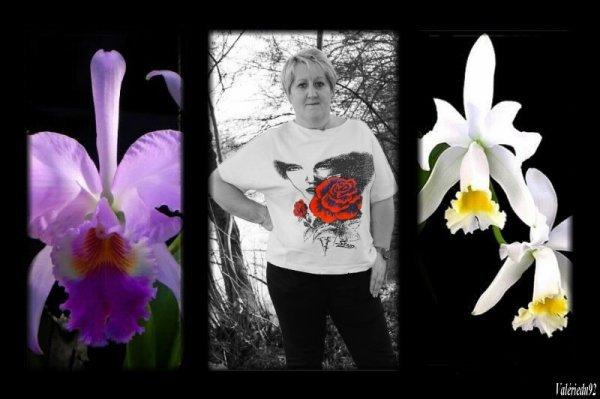 """Merci a toi Valérie du blog """" Valérie92"""" pour ce très beau cadeau !!!"""