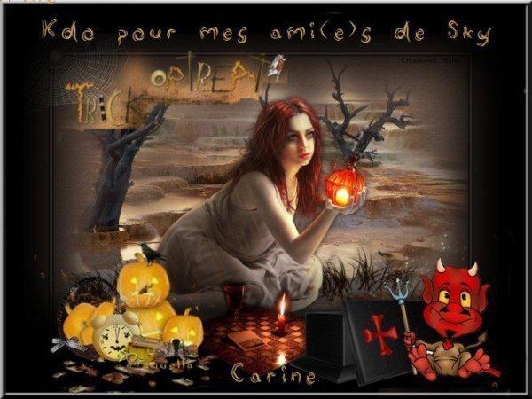 """Cadeau de mon amie Carine du blog """" carine-et-jean-pierre- """""""