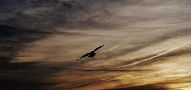 J'adore les couchers de soleil !!! Photos faite par ma fille à Château Thierry !!!