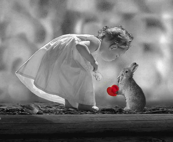 """Magnifique cliché prise sur le blog de mon ami Michel du blog """" Paysage-et-nature """", j'adore trop !!!!"""