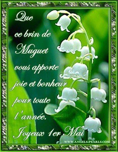 Je vous souhaite a tous un bon 1er Mai, que surtout beaucoup de bonheur !!! (l) (l)