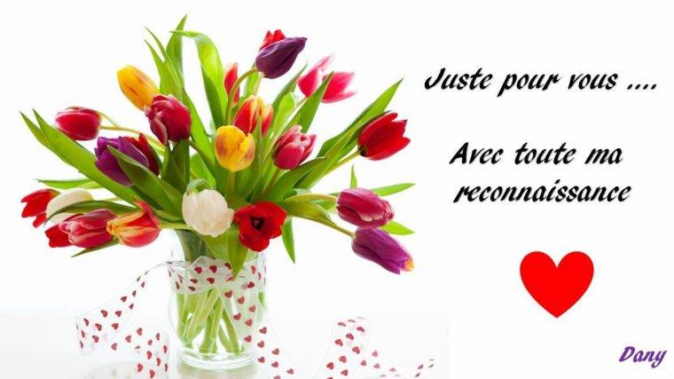 Un grand MERCI pour votre soutient , bonne journée a tous !!!! Gros bisous du (l)
