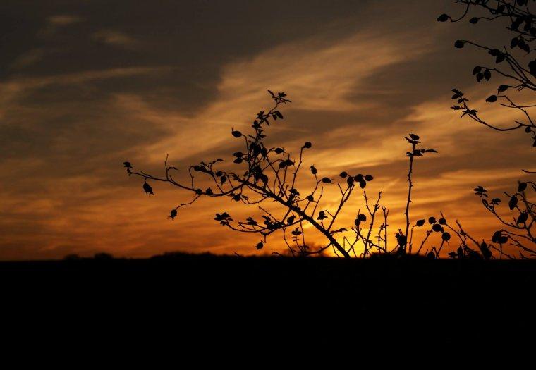 Le soleil couchant est un artiste de génie ♥ Photo perso !!!