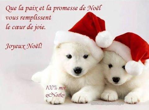 Joyeux Noël a tous !!! Gros bisous du (l)