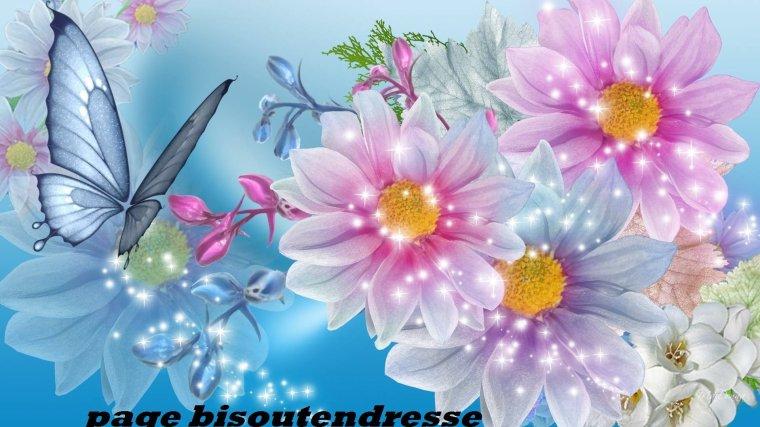 Un peu de douceur pour vous souhaiter une bonne journée !!!