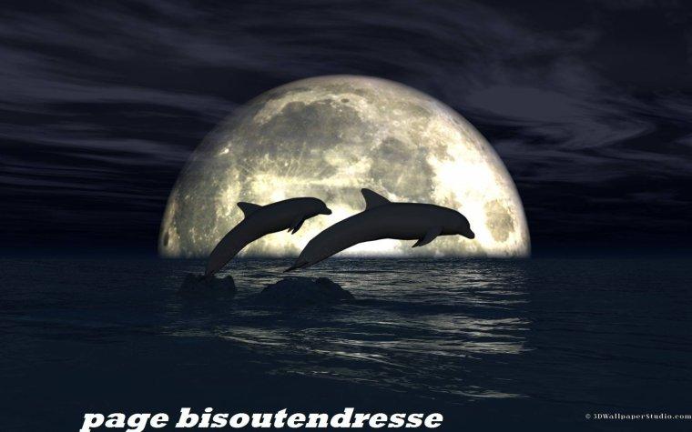 Bonne soirée et douce nuit a tous avec de gros bisous !!!