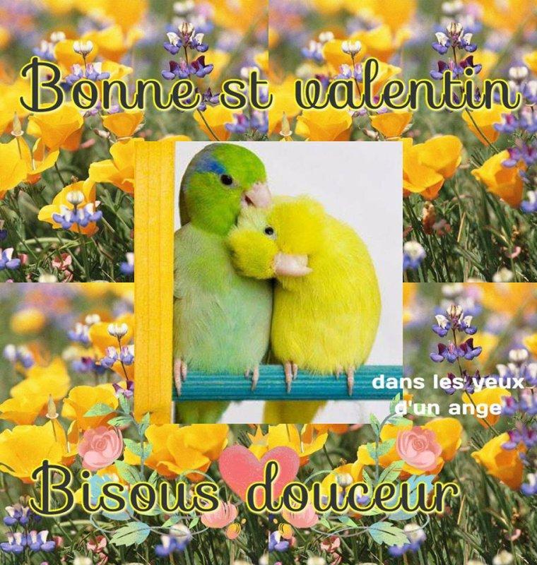 Bonne Saint Valentin a tous !!!!
