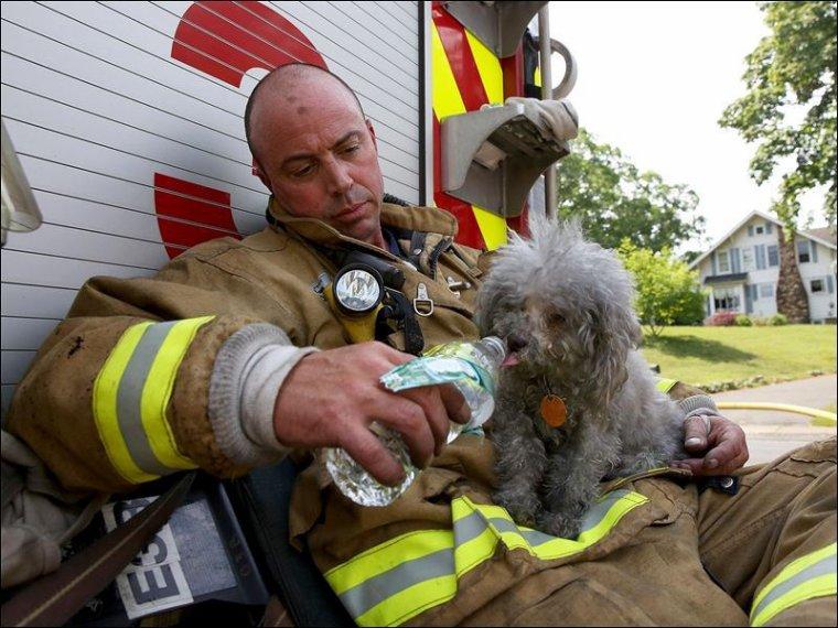 C'est ça aussi être pompier, des hommes aux grand c½ur , merci a eux !!!