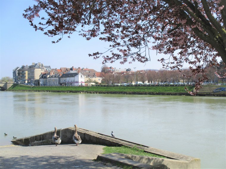 Je continue ma ballade au bord de Marne ...... Photos perso !!!