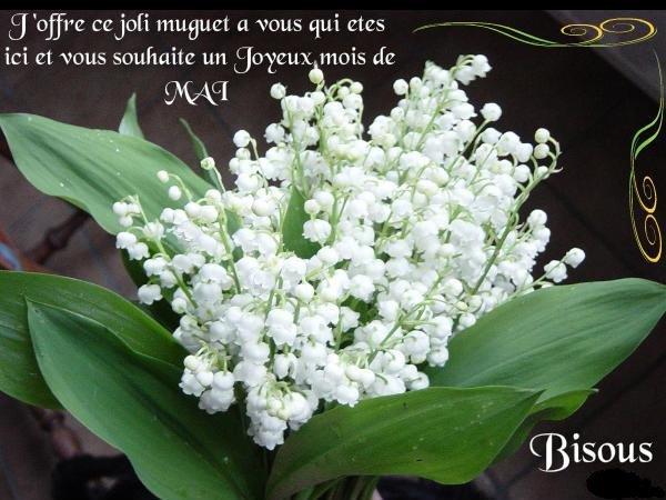 Bon 1er de Mai a tous avec beaucoup de bonheur surtout , gros bisous du (l)
