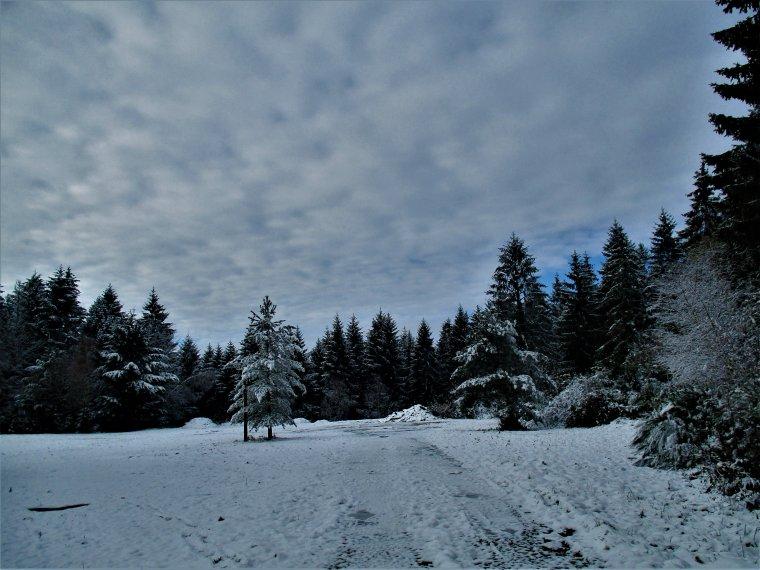 Petite ballade dans la neige, trop beau !!