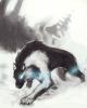Sous la neige.... (chapitre 1?)