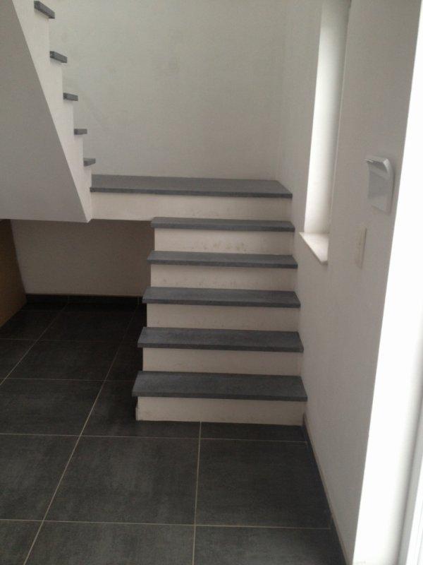 escalier en pierre bleue contre marche plafonées - Entreprise Duchêne