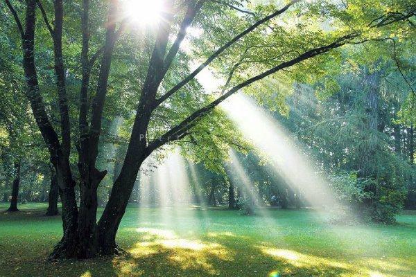 Le véritable échec est que l'un de nous ne trouve aucune place au paradis alors qu'Allah nous a informés qu'il est large comme les cieux et la terre...             [Salah Al Moghamsi]