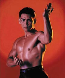 """Don""""the dragon""""Wilson...notre Bruce Lee du vidéo-club"""