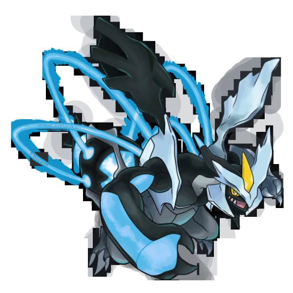 le chef des pokemons dragons