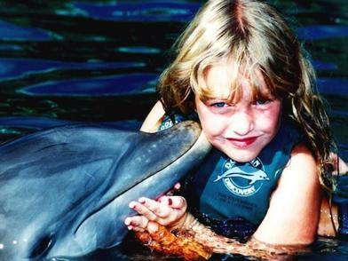 Hur viktigt är det att simma med delfiner?