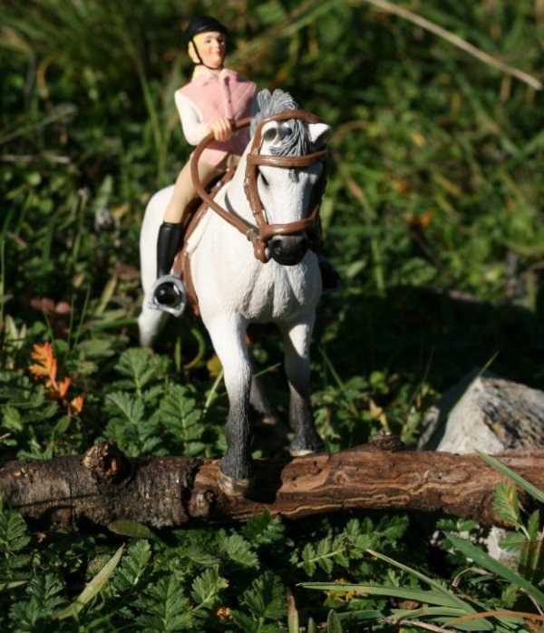 Pour le photo-show de schleich55