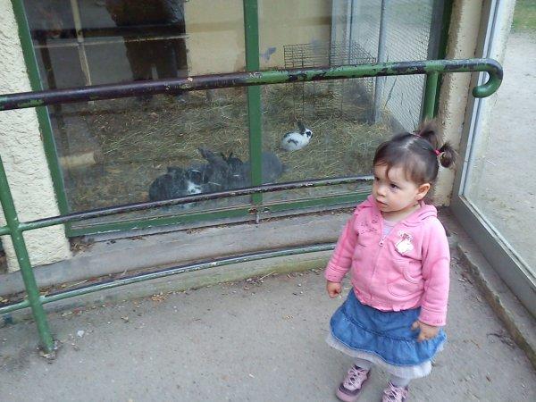 dimanche 03 avril 2011 17:53