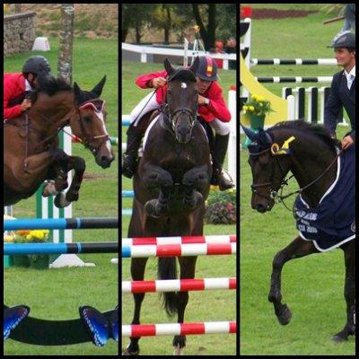Stages & concours, de la saison 2010 / 2011.