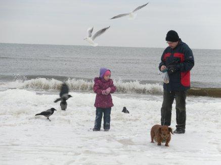 Denkt an die hungernden Vögel im Winter