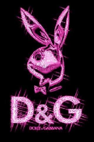 D&G play boy