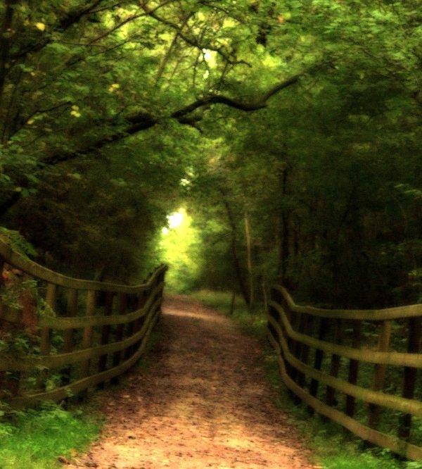 un chemin, un destin, la moitié d'une vie...