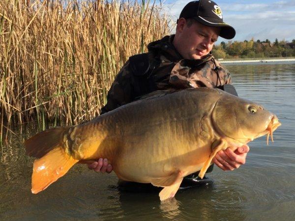 Big fish 20+