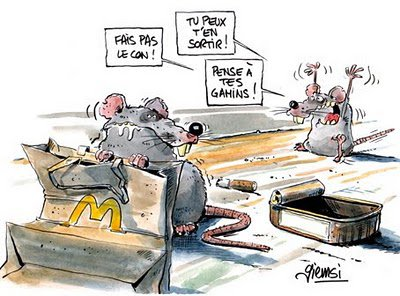 Une histoire de rat