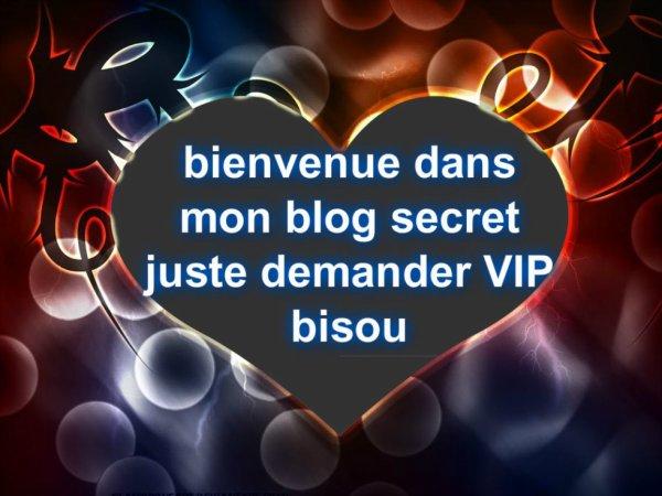 bienvenue dans mon blog secret