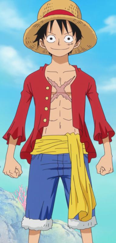 Luffy Capitaine de L'éguipage du Chapeaux de Paille